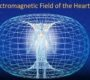Feng shui i DNK prostora-VIDEO