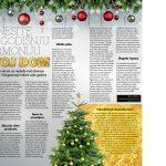 Unesite novogodišnju harmoniju u svoj dom-običaji pred novu godinu-Magična zona