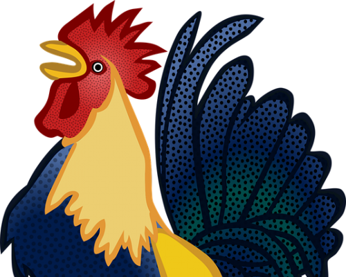 Petao ili feniks-simbol uspeha i ugleda