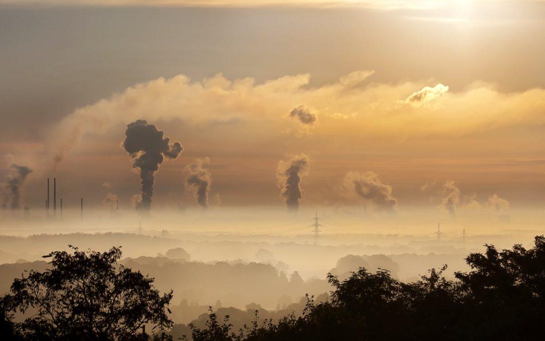 Odnos kiseonika i ugljen dioksida je kao yin-yang u feng shui