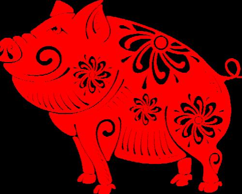 Šta donosi 2019. godina svinje?